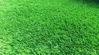 Требования к футбольной искусственной траве